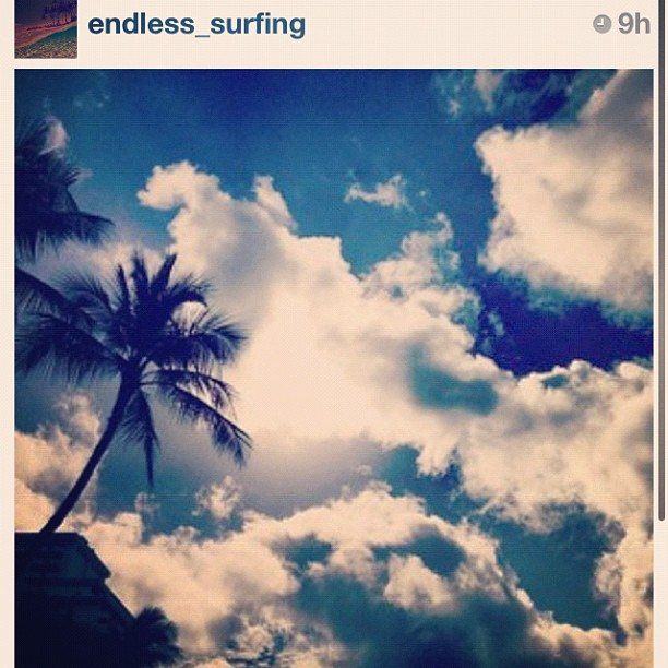 S/o to @endless_surfing they post great pics!