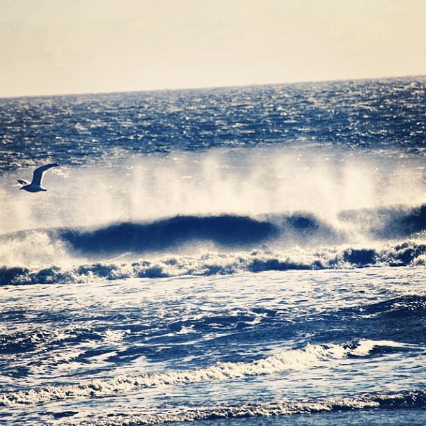 Early morning wake up. #physixsurf